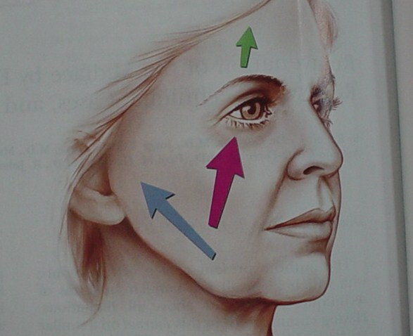 Plastic surgery Egypt Cosmetic face lift neck  lift Cairo wrinkles nose job
